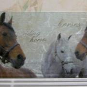 """""""Les chevaux """""""