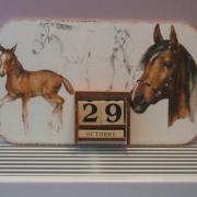 """""""les chevaux"""""""