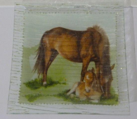 """""""le cheval et son petit"""""""