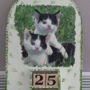 chats bord vert