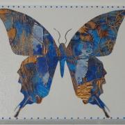 """papillons""     stock : 1"