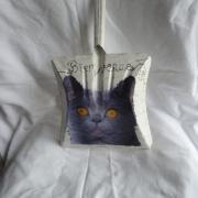 plaque de porte pelle chat